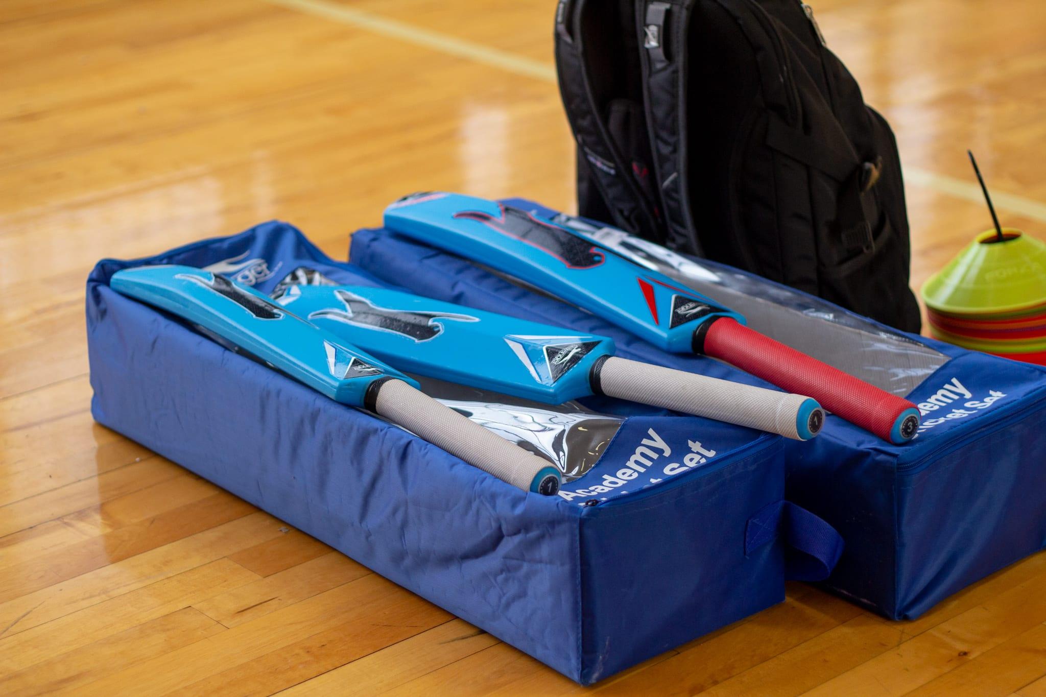 blue cricket bats on bags