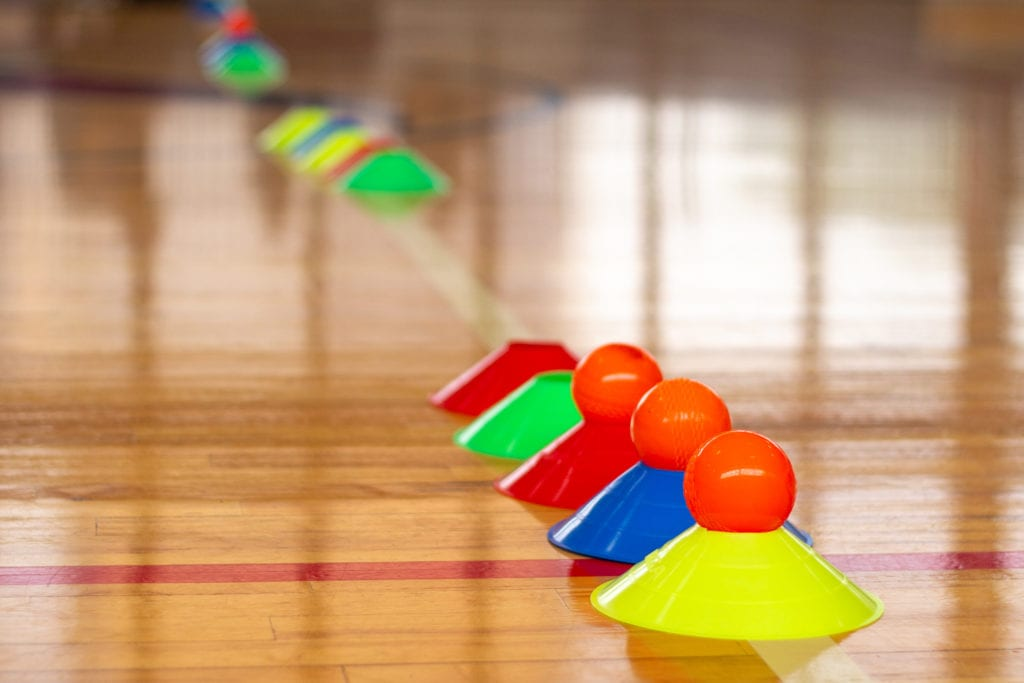cricket balls on cones for cricket practice